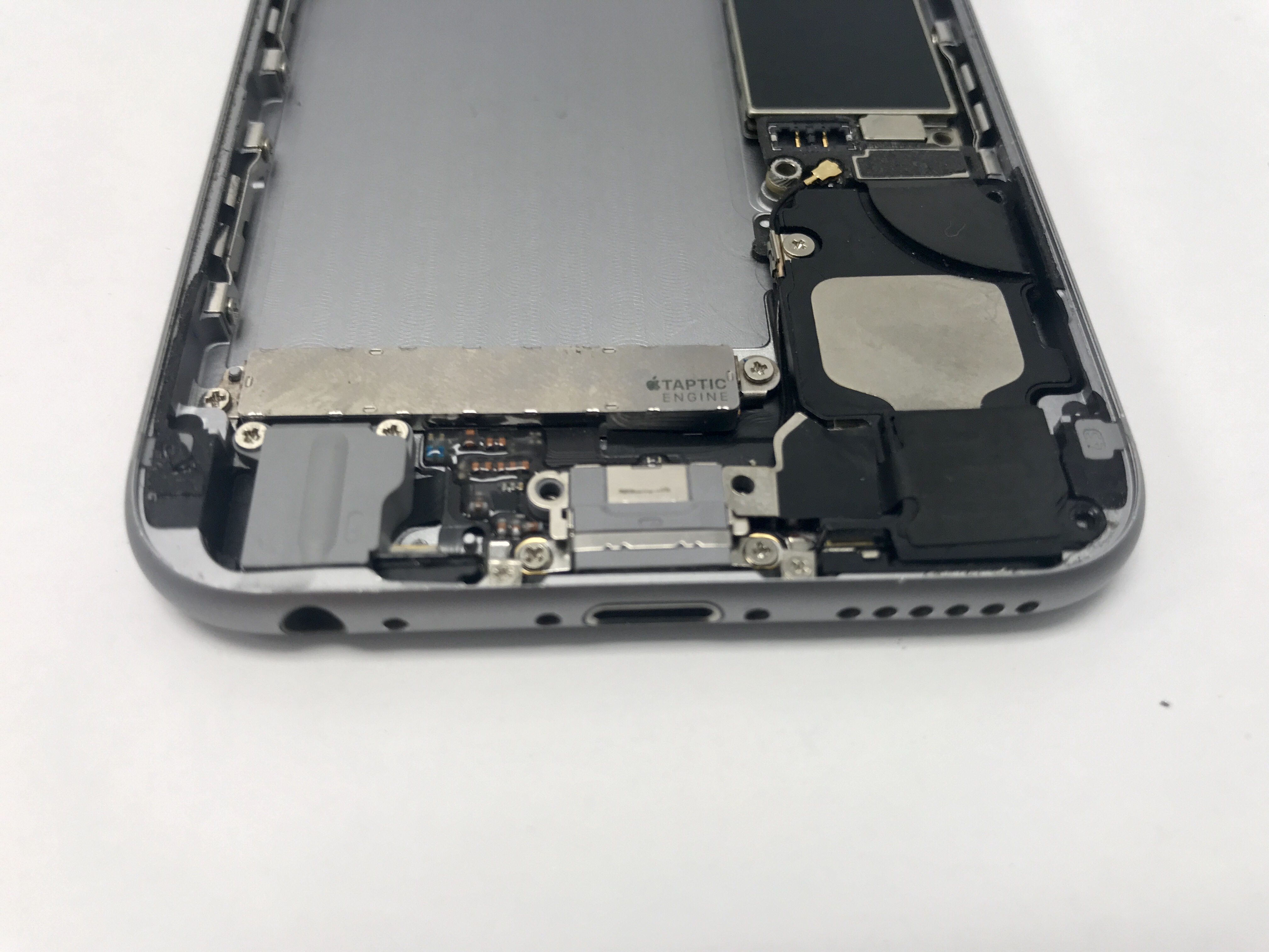 iPhone 6 charging port.JPG